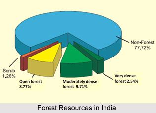 What are the advantages of Forest Conservation?